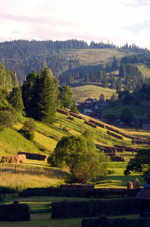 Europe, Romania, Moldavia ,Bucovina, mountain view
