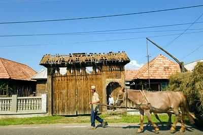 Europe, Romania, Maramures, village in Mara valley, Maramures style design