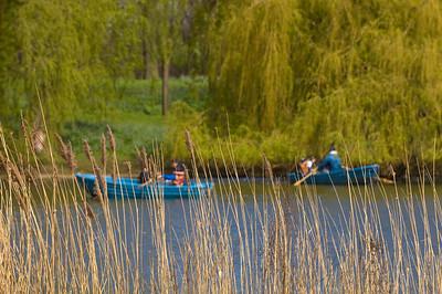 Boating Lake in Regent's Park, NW1, London, United Kingdom