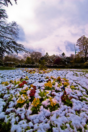 Snow in early spring covering Walpole Park, Ealing, W5, London, United Kingdom