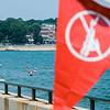 7 5 19 Lynn Kings Beach water quality 6