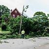 7 24 20 Swampscott tree down