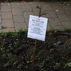 Marblehead072518-Owen-Bell School garden04