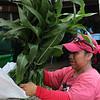 Lynn072618-Owen-Farmers market04