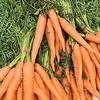 7 5 18 Lynn first farmers market of year 10
