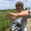 Richard Payerchin - The Morning Journal <br> Lyn Ickes, watershed specialist in the Lorain County Community Development Department, shows her hand and forearm stained yellow with cattail pollen at the Margaret Peak Nature Preserve on June 28, 2017. The Eaton Township preserve is a hidden gem for birders, hikers and anyone who wants to experience the outdoors.