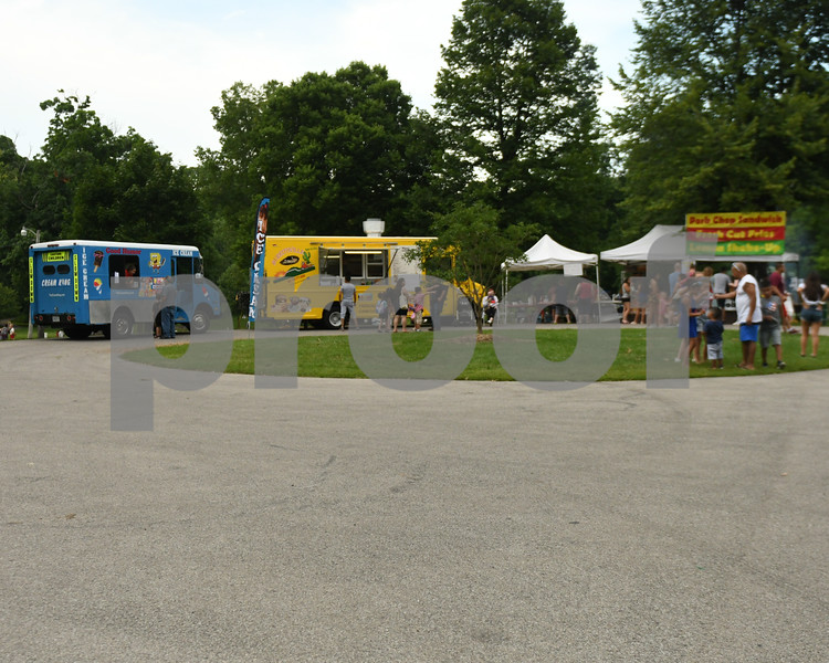 A selection of just some of the food venders stationed at Hopkins Park during the fourth of July celebration at Hopkins Park.