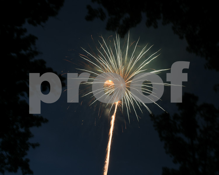 Fireworks go off beyond some trees for the July 4th celebration at Hopkins Park.