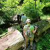 Jonathan Tressler - The News-Herald. Visitors and Holden Arboretum volunteers make their way up an incline at the base of Little Mountain during a family hike there June 11.