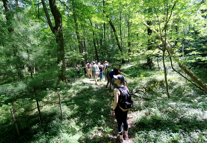Jonathan Tressler - The News-Herald. A group of visitors to Little Mountain Begins its descent from the 1,666-foot peak on a June 11 guided tour of the Holden Arboretum-owned property, which spans the Lake-Geauga county border.