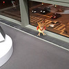 Submitted<br /> Spearow, the brown avian pokemon, was found at the Cleveland Clinic main campus by Ariell Mullins of Cleveland.