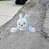 Submitted <br> Seel, the pinniped Pokemon, was found by user Ariell Mullins of Cleveland in her neighborhood.