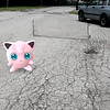 Submitted <br> Jigglypuff, #39, was found by Ariell Mullins of Cleveland in her neighborhood.