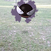 Submitted <br> Gastly, #92, was found at the Rocky River Reservation by Ariell Mullins of Cleveland.