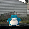 Submitted <br> Snorlax, #143, was found by Ariell Mullins of Cleveland in her backyard.