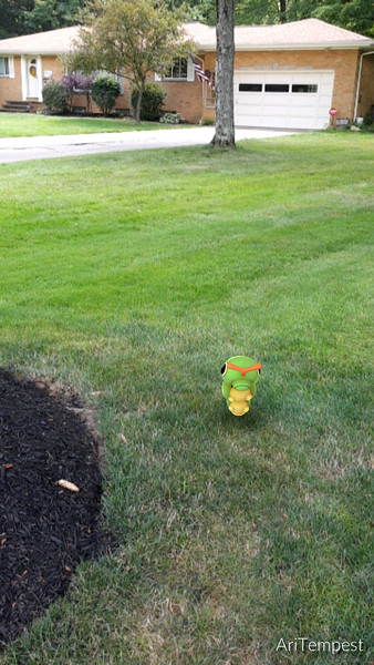 Submitted <br> Caterpie, #10, was found by user Ariell Mullins of Cleveland.