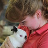 Sydney Smith, 17, Cleveland, holds dusty, her netherland dwarf rabbit that she is showing on July 25, at the 2018 Lake County Fair.<br /> Kristi Garabrandt - The News-Herald