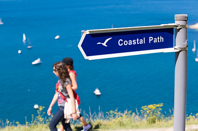 Coast overlooking Alum Bay and English Channel, Isle of Wight, United Kingdom