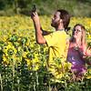 dc.0730.Shabbona sunflowers09