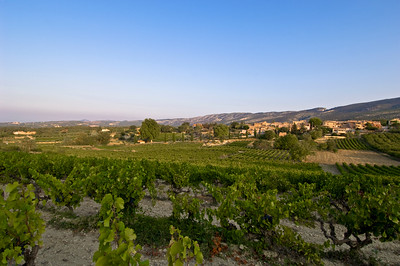 Europe, France, Provence, vineyards and rural lanscape at the foot of Mont Ventoux