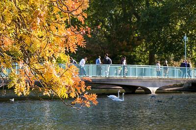 Autumn colours by Blue Bridge and pond, St James's Park, SW1, London, United Kingdom