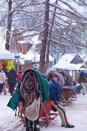Horse drawn sleigh waiting for customers on Krupowki Street, Zakopane, Tatra Mountains, Podhale Region, Poland