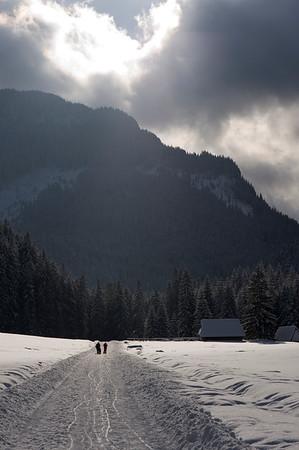Scenic and picturesque Dolina Koscieliska, Zakopane, Tatra Mountains, Podhale Region, Poland