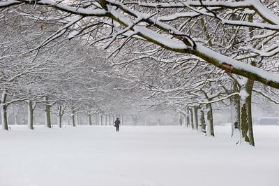Walpole Park covered in February snow, Ealing, W5, London, United Kingdom