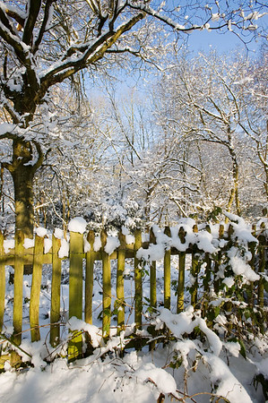 Hampstead Heath covered in snow, NW3, London, United Kingdom