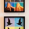 8 12 21 SRH Lynn Pop Art exhibit at GALA 13