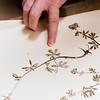 8 14 19 Nahant Library herbarium grant 5