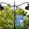 8 17 18 Lynn Common banners 1