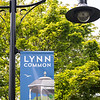 8 17 18 Lynn Common banners 2