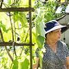 8 2 18 Lynn Cambodian gardeners 13