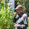 8 2 18 Lynn Cambodian gardeners 4