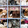8 24 18 Marblehead Mud Puddle Toys 10