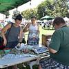 Swampscott. Farmers Market August 11 2019 6