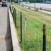 8 8 20 Lynn fencing along Lynn Shore Drive 6