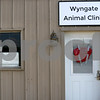 dnews_0801_Wyngate_Clinic_05