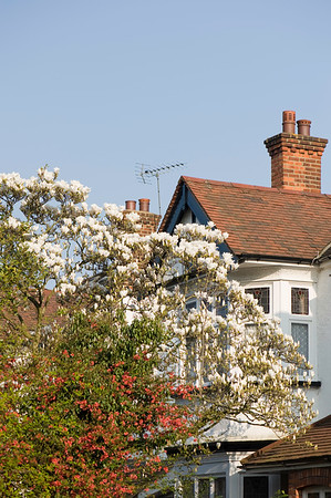 Houses in Ealing, W5, London, United Kingdom