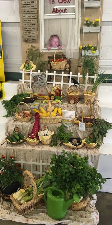 """. \""""Something to Crow About\"""" garden display. David S. Glasier - The News-Herald"""