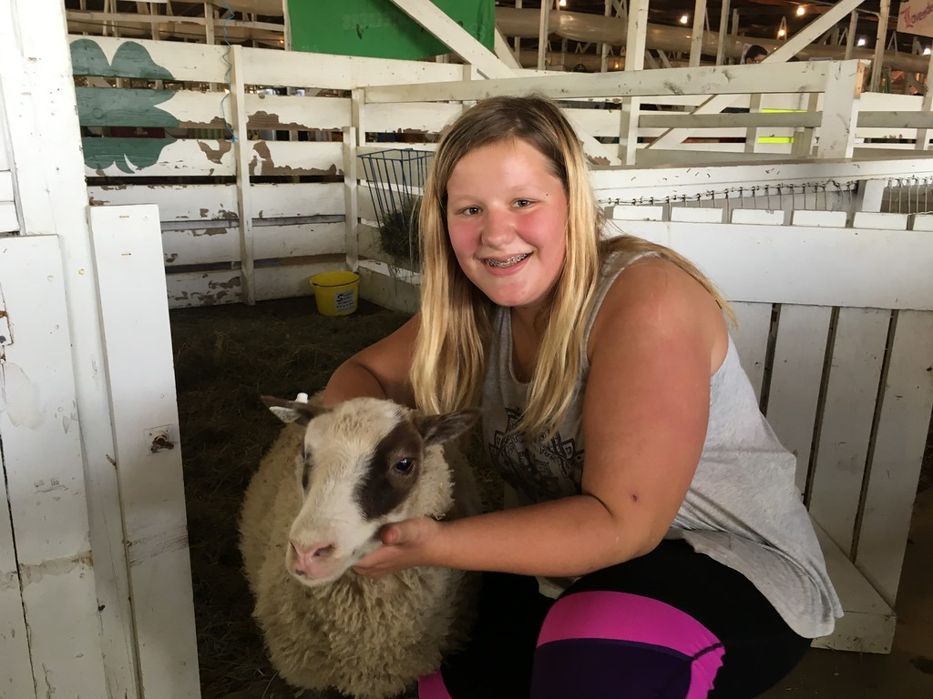 . Ellie Hetheril of Solon and her Shetland sheep, Rain(David S. Glasier/The News-Herald)