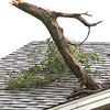dc.0811.storm damage06