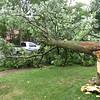 dc.0811.storm damage01