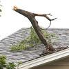 dc.0811.storm damage07