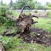 dc.0811.storm damage16