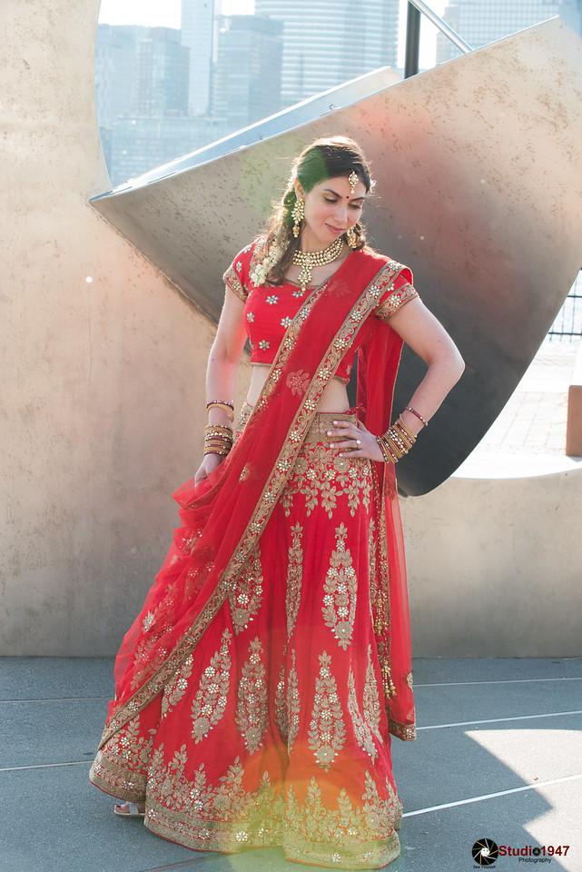 08.11.2017 Vivek & Ariana (Wedding)
