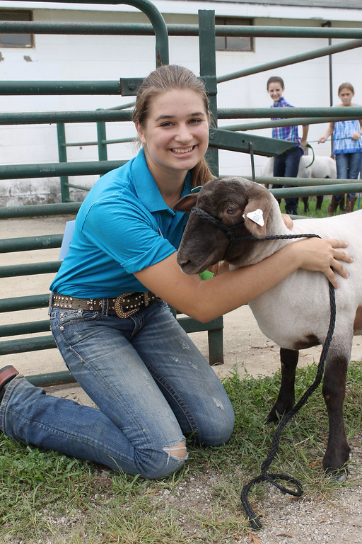 . Kailee Leonard � The News-Herald <br> Taylor Woodward smiles with her lamb before entering the show pen for senior showmanship.