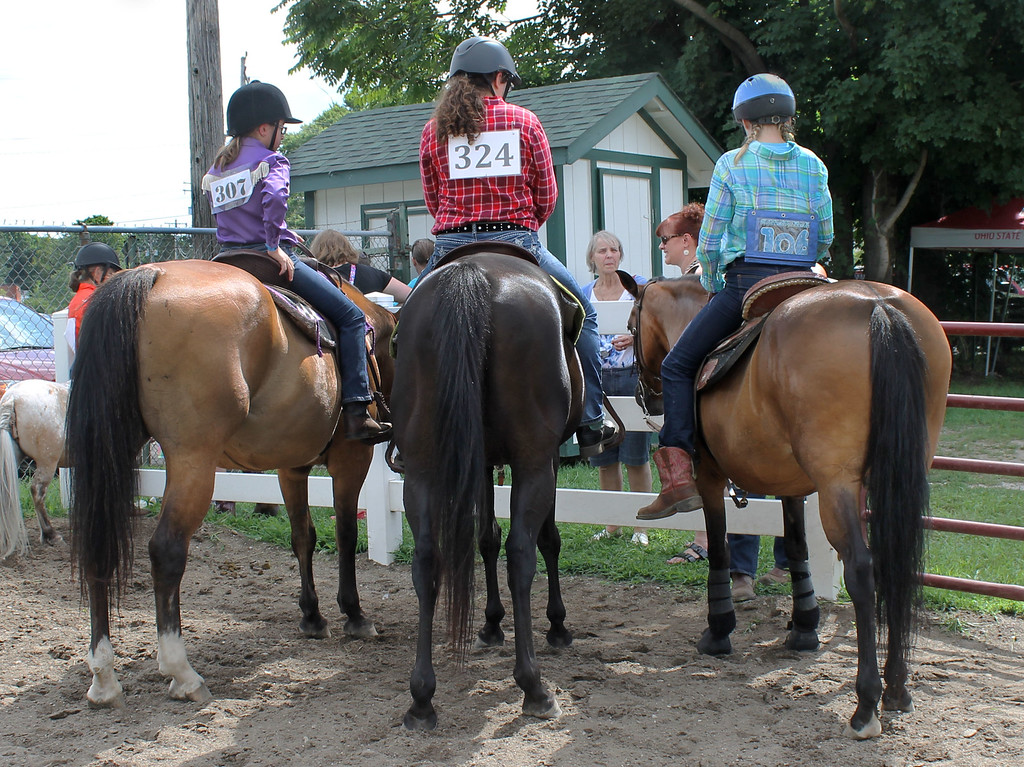 . Kailee Leonard � The News-Herald <br> Three fellow 4H members hang out during the Walk-Trot contesting competition held Wednesday morning.