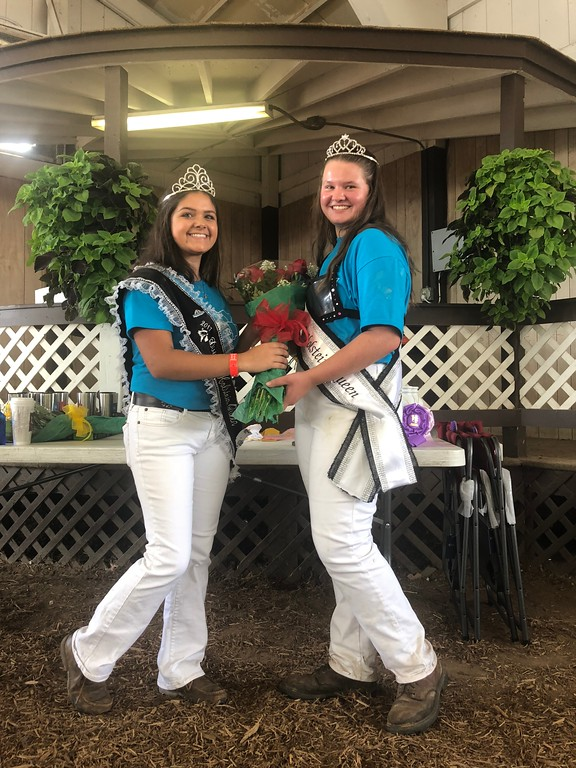. Briana Contreras � The Morning Journal <br> Jazmine Auble , 15, was the 2017 District 8 Holstein Queen and passed a new crown down to Cora Gunkelman, 15, the 2018 winner, during the Lorain County Fair on Aug. 21.